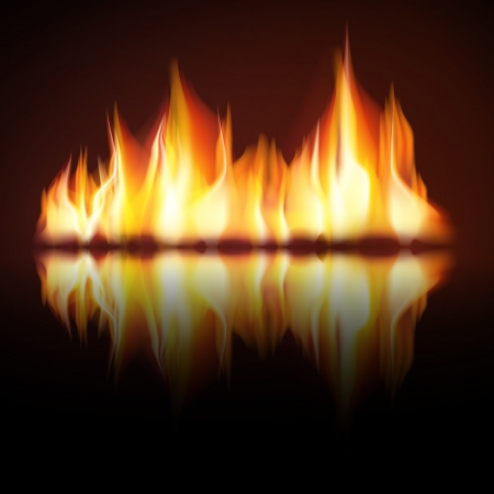 Burning fire flame on black background Stock Vector - 19447022