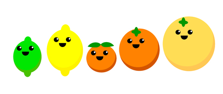 Cute illustration of various citrus fruits Çizim