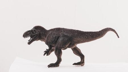 plastic toy dinosaur on white background