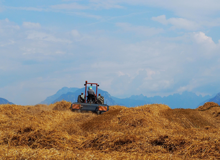Tractor with a hay field just cutted. Faraway mountains on a blue sky with clouds