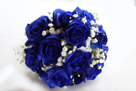 recitation: Bouquet of blue roses, on white background