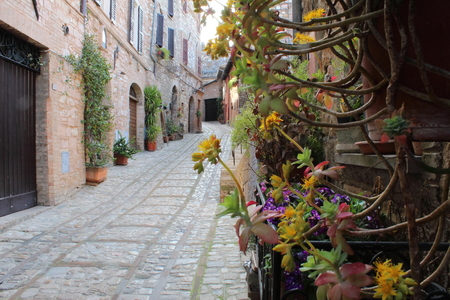 Spello among flowers and old houses Stock Photo