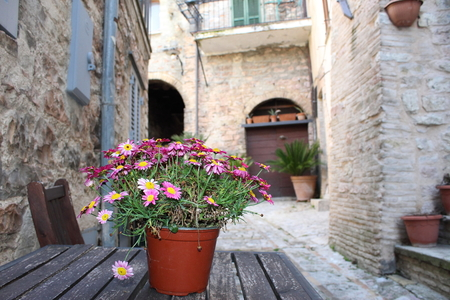 simple vase of flowers on the table in the streets of the ancient village of Spello Stock Photo