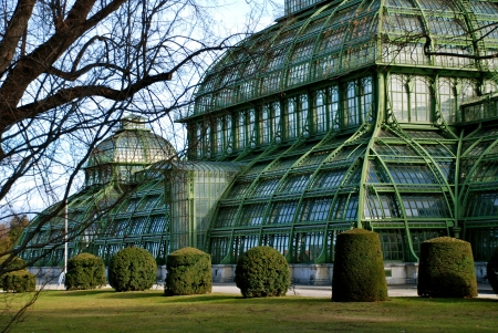 The Great Palm House at Schonbrunn Castle, Vienna