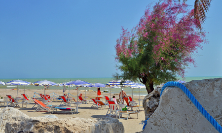 panoramic view of the promenade of Grottammare, Marche, Italy