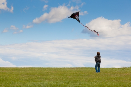 Little boy with a kite on the blue sky and meadow