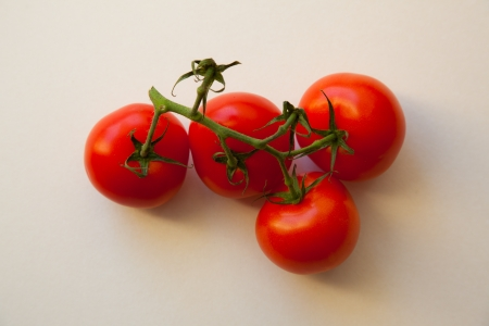 Four red tomatoes on green branch  White background