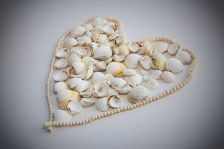 The heart of the white shell necklace and carved from bone  White background with black blur