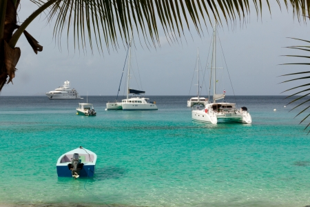 Yachts, boat and ship near palm beach  Azure water  Fragment of palm trees  Caribbean island  Stock Photo