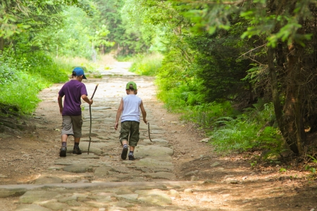 The two little boys walking through the green forest. Stock Photo