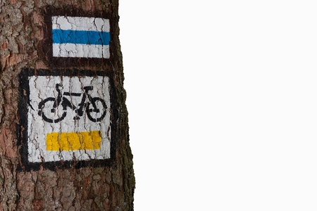 bike trail: Bike trail sign on the tree. White separated. Free space. Close-up.