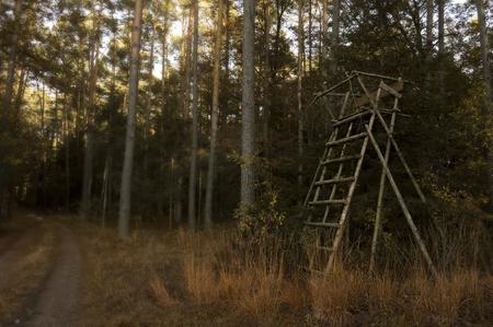 Jagers verstoppen zich in een bos