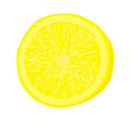 Ripe lemon - vector illustration