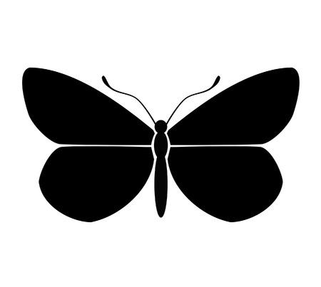 butterfly silhouette: Butterfly silhouette