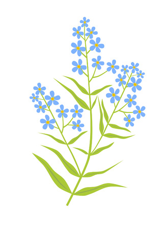 herbalist: Blue flowers.