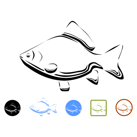 common carp: Carp - vector illustration Illustration
