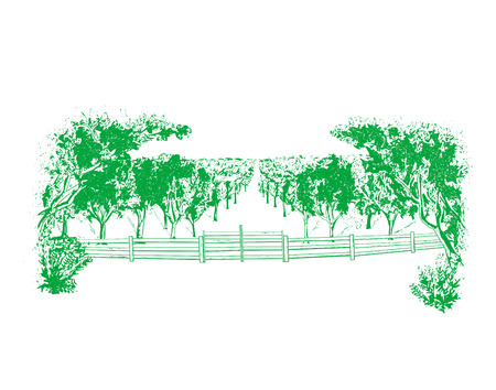 Agricultural landscape, orchard with fruit trees - vector illustration