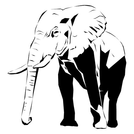 A large african elephant with tusks