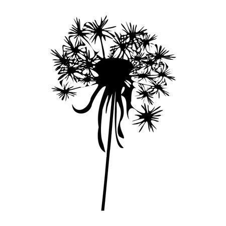 Dandelion silhouette - vector illustration.