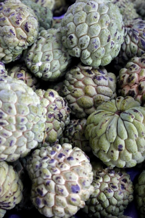 sweetsop: Custard apple also know as Fruta-do-conde in Brazil Stock Photo