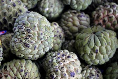 sweetsop: Mela cannella noto anche come Fruta-do-conde in Brasile