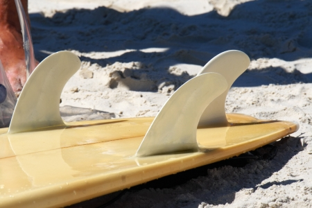 keel: Surfboard detail layed on sand at the beach