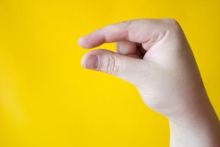 Photo of Bit - Hand signal photo