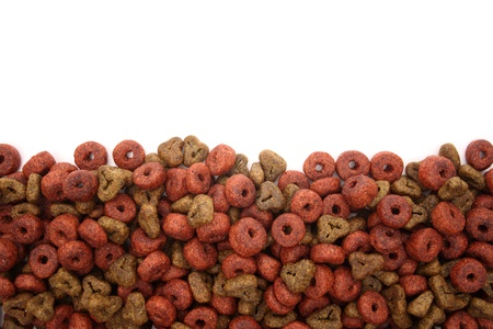 Filling with dog food. Isolated on white. Stock Photo - 18601697