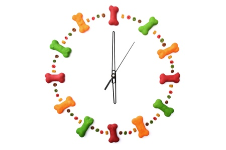 A clock made of dog biscuits and dog food isolated on a white background showing 6 o'clock. Stock Photo - 18598635