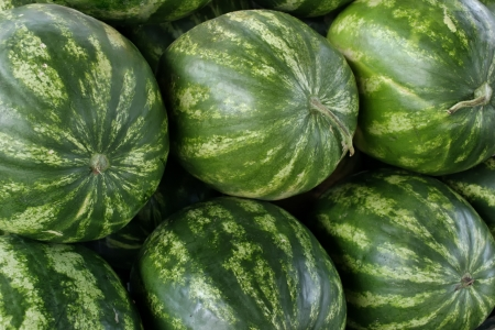 hz: Closeup of watermelon produce Stock Photo