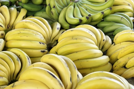 Closeup of bananas produce Stock Photo - 18589654