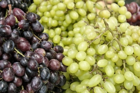 Closeup of grapes produce Stock Photo - 18600475
