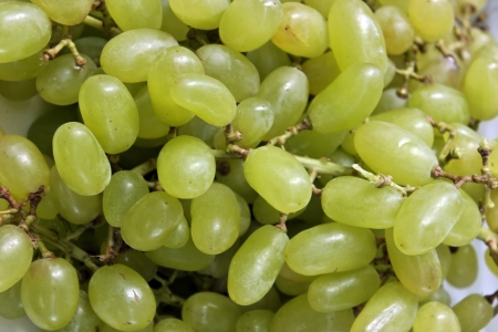 Details of green grapes Stock Photo - 18599924