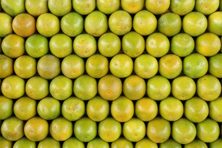 Front or Top view of organized oranges Stock Photo - 18601984