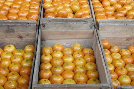 Groceries - Oranges in crates Stock Photo - 18601704