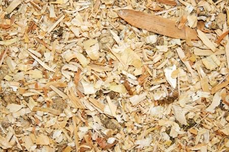 An animal theme  Sawdust animal bedding  Texture  Stock Photo - 19036635