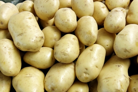 A food theme: Potatoes Stock Photo - 18599995