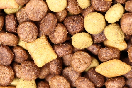 manufactured: A macro shot of manufactured dog food. Stock Photo