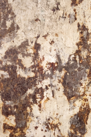 iron oxide: Photo of Back groover dirty (Texture)
