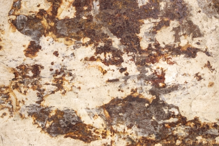 iron oxide: Photo of Dirty back of trowel (Texture) Stock Photo