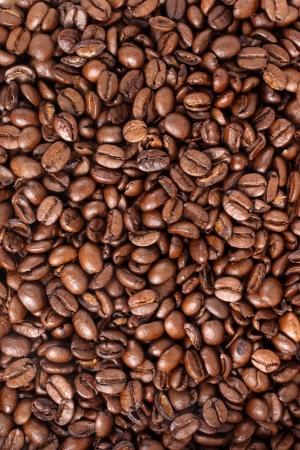 caf: Photo of Coffee beans - Medium Stock Photo