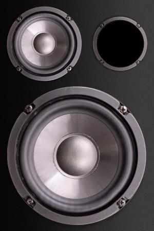 enclosure: Photo of Loudspeakers enclosure