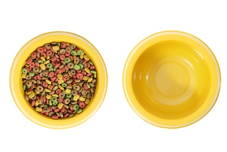 Isolated bowls. One with dog food and other empty. photo