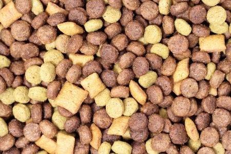 comida perro: Perro blanco comida - fondo