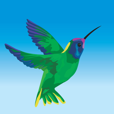 clear sky: Stylized humming bird flying on clear sky - Vector illustration