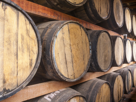 tomando vino: Oak barrels piled for storing alcoholic beverages such as wine, whisky, rum, and etc.