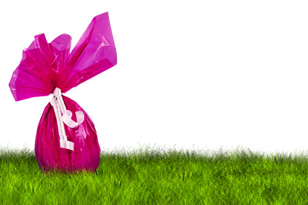 chocolate background: Purple Easter Egg hunt on grass on white background