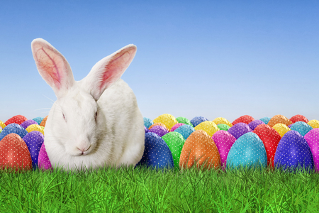 green background: Full Happy Easter with sky background