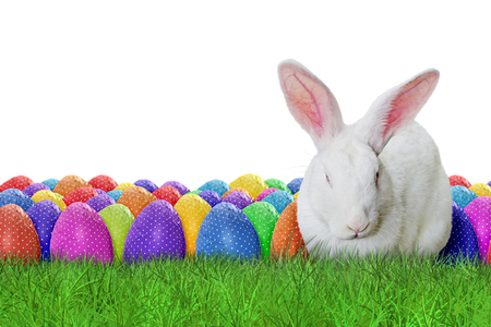 grass background: Full Happy Easter on white background Stock Photo