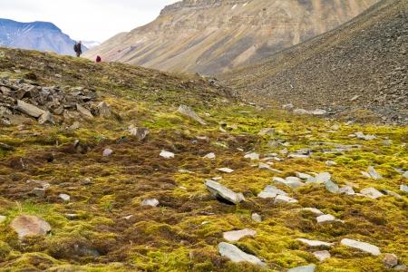 Trekking Svalbard